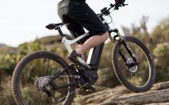 GG 29 lug e bike experience