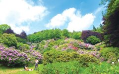 GG oasi zegna nel biellese montagna dei bambini