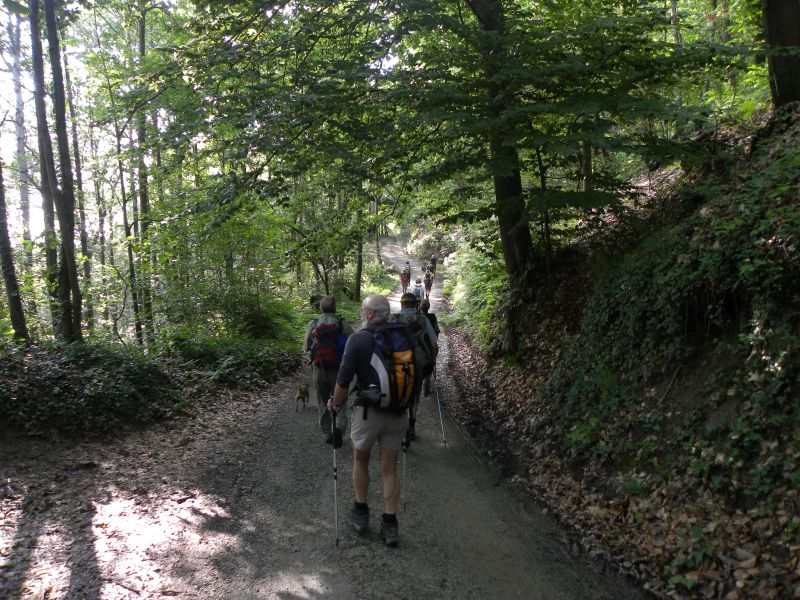 GG 29 sett tra le verdi colline marentinesi