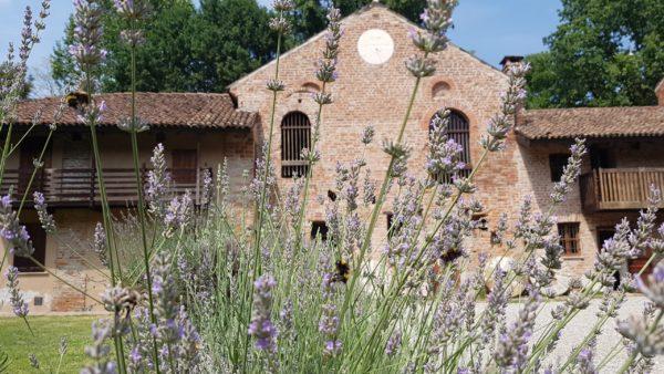 Campus al Mulino di Chiaravalle 2019