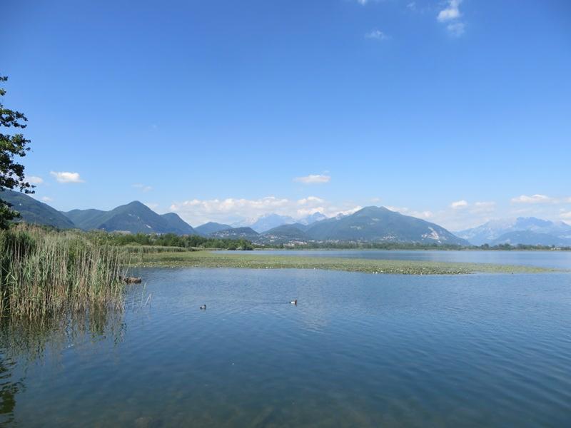 Domenica sul lago di Alserio