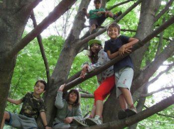 Mini-campo trekking
