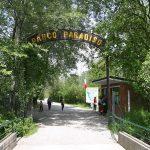 Parco Ittico Paradiso – Zelo Buon Persico (LO)