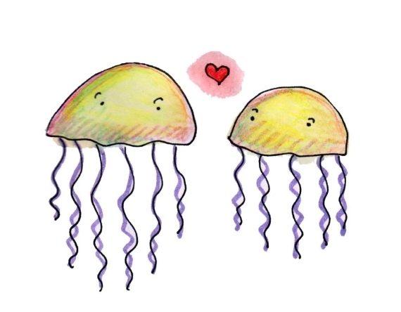 punture di medusa