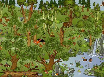 Letture di tutte le forme e colori e Kids into the wild!