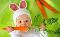 svezzamento vegetariano