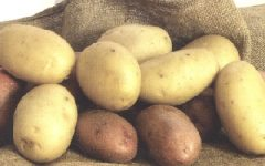 GG 6 ott sagra della patata