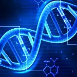 Tutti i numeri del DNA