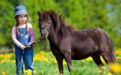 GG a spasso con i pony