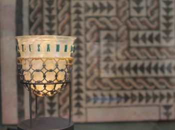 Al Museo Archeologico di Milano con Aster in novembre