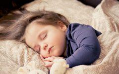 GG lo sportello del sonno torino