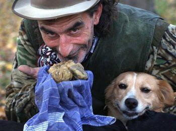 Raduno dei cani da tartufo: a Canale sfilano i trifulau