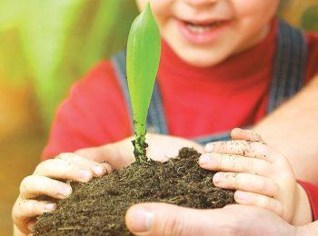 Idee di Economia Circolare per far crescere la Natura in casa