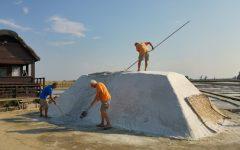 Cervia museo del sale