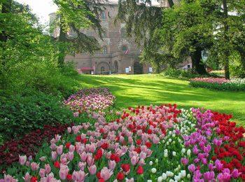 Messer Tulipano 2019 compie 20 anni al Castello di Pralormo