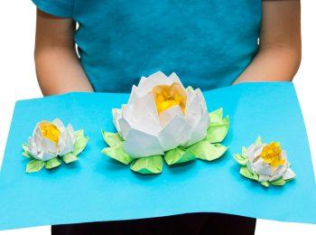 Creatività 3D con il giardino pop-up