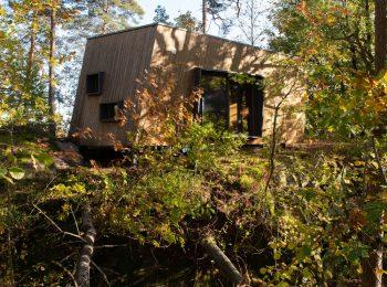 Dalla Norvegia i nuovi ospedali in mezzo al bosco