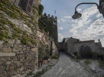 Cantine Aperte in Vendemmia 2019