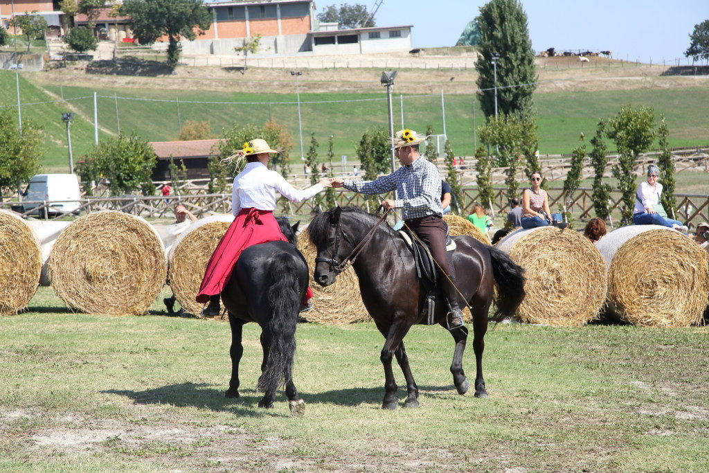 Rural Festival Rivalta 20192