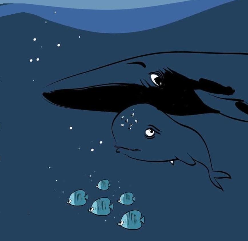 GG la balenottera mar