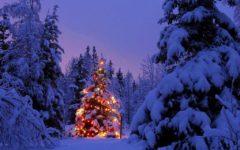 GG cascina santa brera dicembre