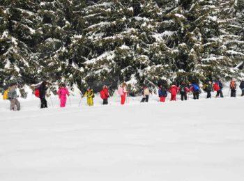 Escursioni per tutti al Parco Nazionale Gran Paradiso a gennaio