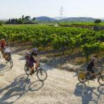 Vacanze in bicicletta coi bambini: le mete del 2020