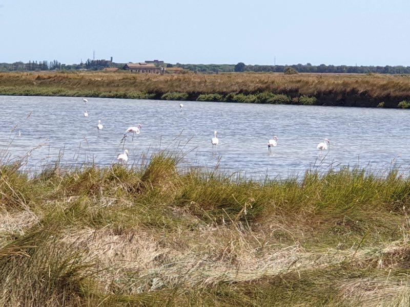 po delta tourism