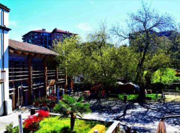 GG cascina roccafranca ad aprile