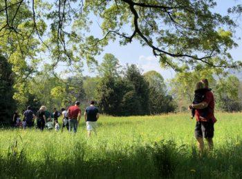 Caccia al tesoro botanico al Castello di Miradolo ad aprile