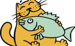 Vitamina D pesce e altri alimenti