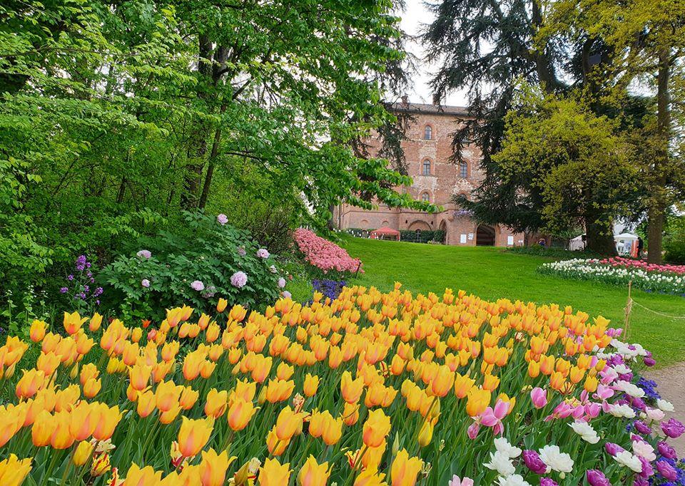 tour virtuale giardini