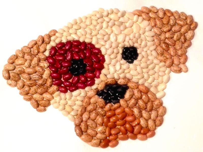 Il mosaico con legumi, riso e zuccherini