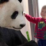 FamilyTime: giochiamo con la musica, Zarafa e le bambole di pezza