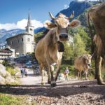 Valsesia, la montagna a misura di famiglia