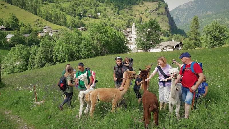 montagna con bambini