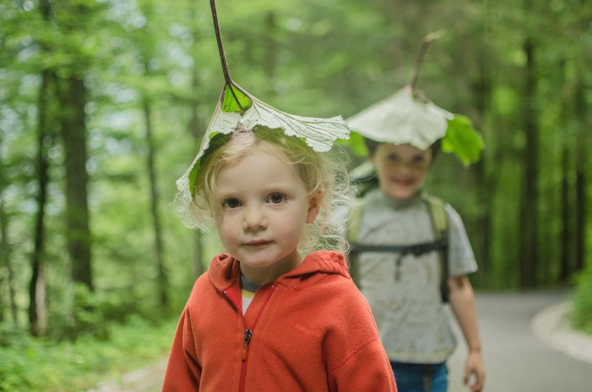 libri per imparare dalla natura bambini verde bosco