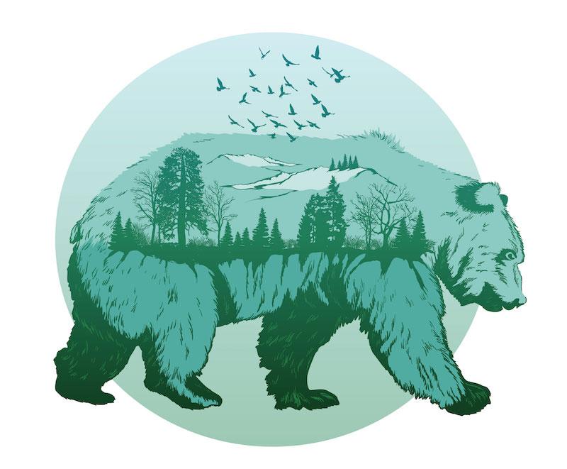 leggenda orso