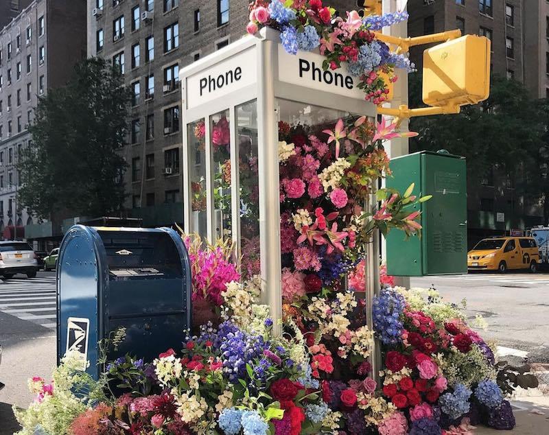La finestra in città: l'arte urbana con i fiori