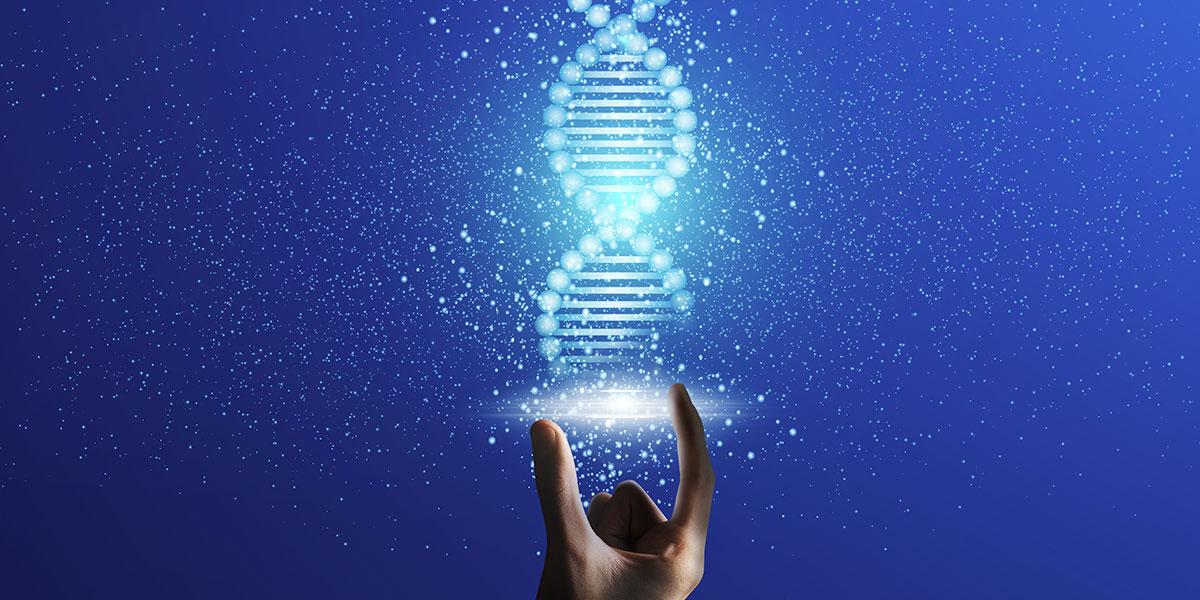 Epigenetica: se ambiente ed esperienza modificano il nostro DNA