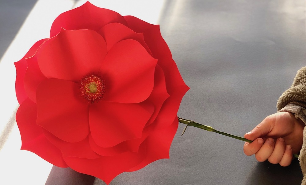 Colori che sbocciano: costruire un fiore con la carta