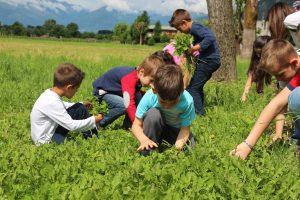 fattoria milano